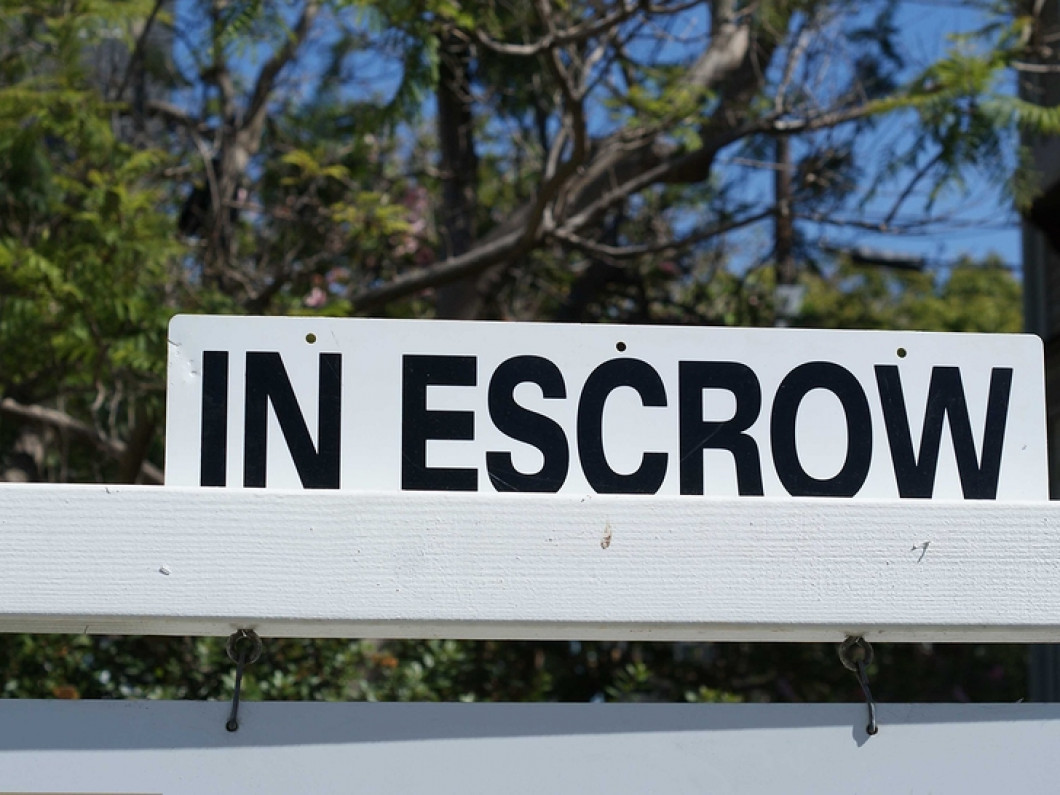Get Your Escrow Termite Inspection in No Time